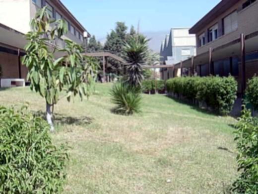 Imagen de la entrada