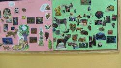 4B mural animales