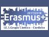 erasmus_100.png
