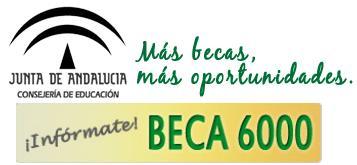 2019 Becas 6000
