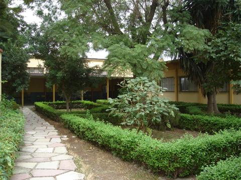 Jardín, junto a la Biblioteca
