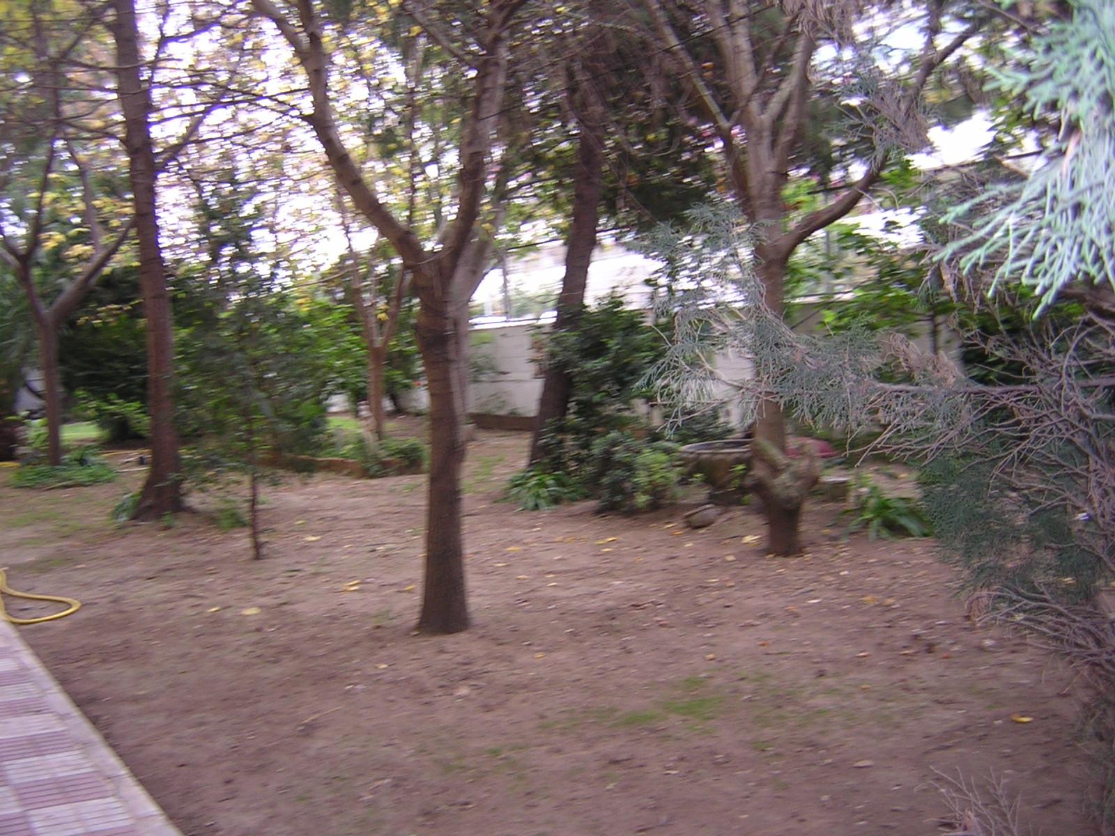 Sitio web de c e i p santa amalia for Jardines traseros