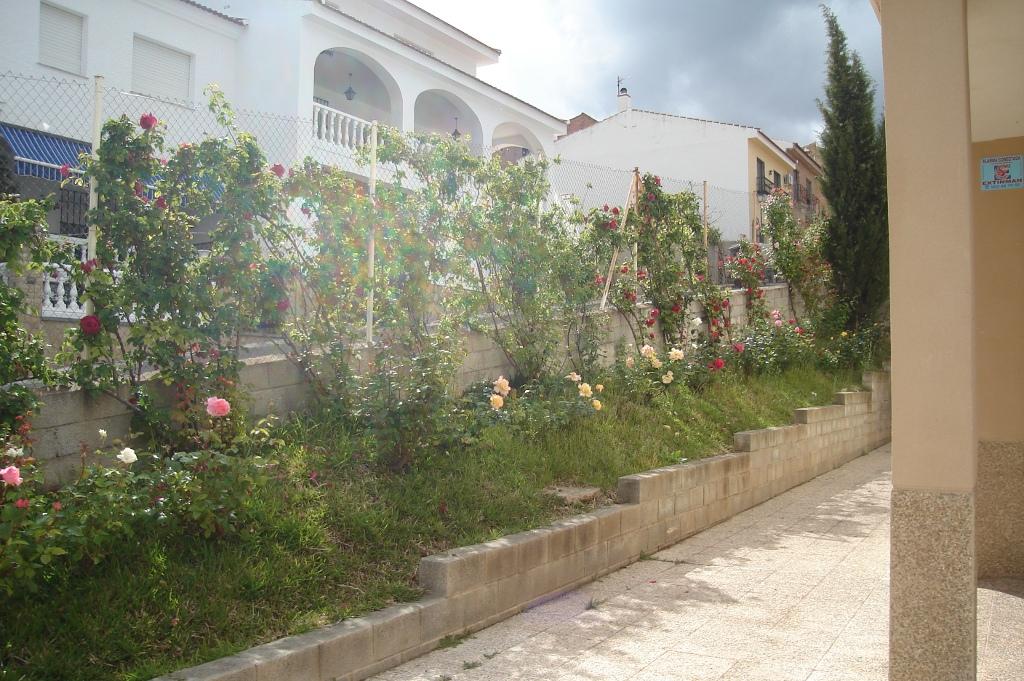Jardines de la entrada del centro