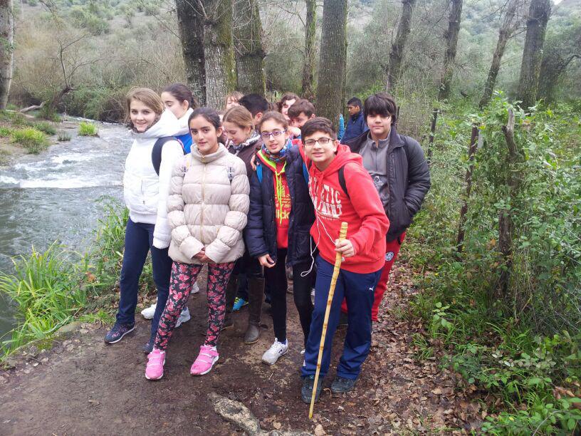 Senderismo Febrero-14-1ESO-bosque1