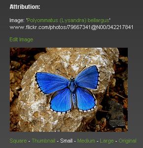 Imagen:flickrcc01.png