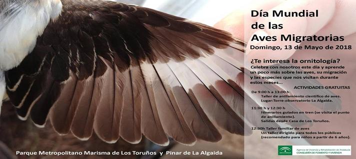 Rutas de observación y un taller de anillamiento para celebrar el Día Mundial de las Aves en el Parque de los Toruños