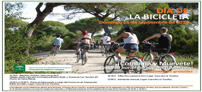 Marchas sincronizadas y talleres para aprender a reparar, entre las actividades previstas para el Día de la Bici en los Toruños
