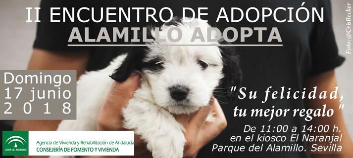 Protectoras de animales participan en un encuentro en El Alamillo para promover la adopción de mascotas