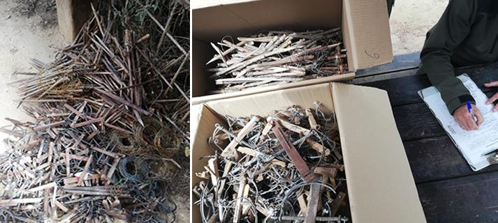 Retirados 760 artilugios usados para caza furtiva en el Parque de los Toruños