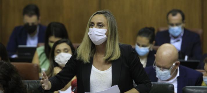 Marifrán Carazo insta al Gobierno a consensuar y aprobar ya la Ley y el Plan Estatal de Vivienda