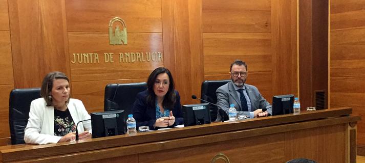 La Junta considera clave el plan autonómico de vivienda para avanzar en la solución del problema de acceso a un inmueble digno