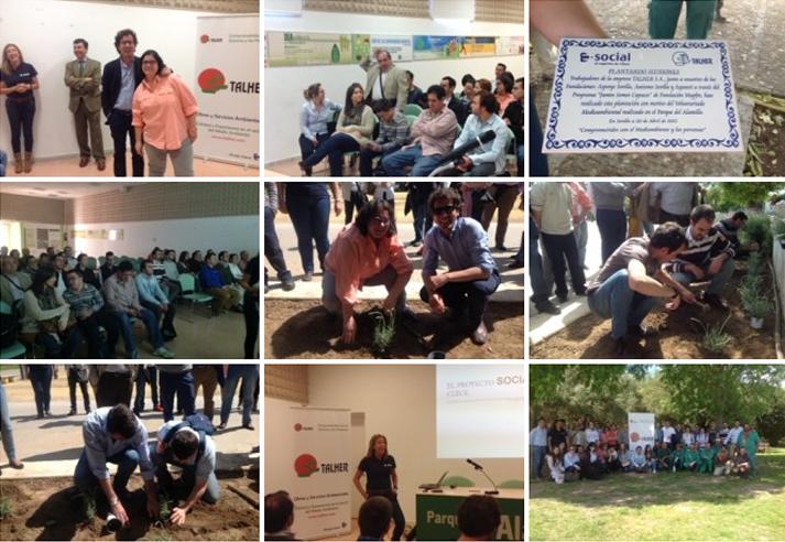 Jóvenes con discapacidad intelectual participan en la reforestación del Parque del Alamillo