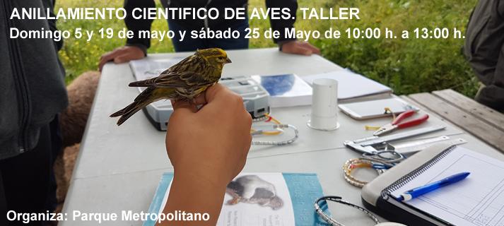 ANILLAMIENTO CIENTÍFICO DE AVES. Taller