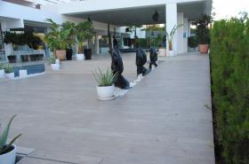 Hotel Flamero. Acceso Exterior