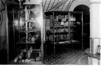 Interior Museo fabrica de gas