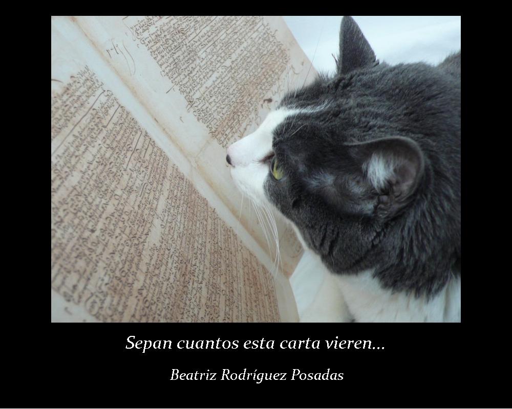 Sepan cuantos esta carta vieren; Beatriz Rodríguez Posadas (jpg 364 kb)