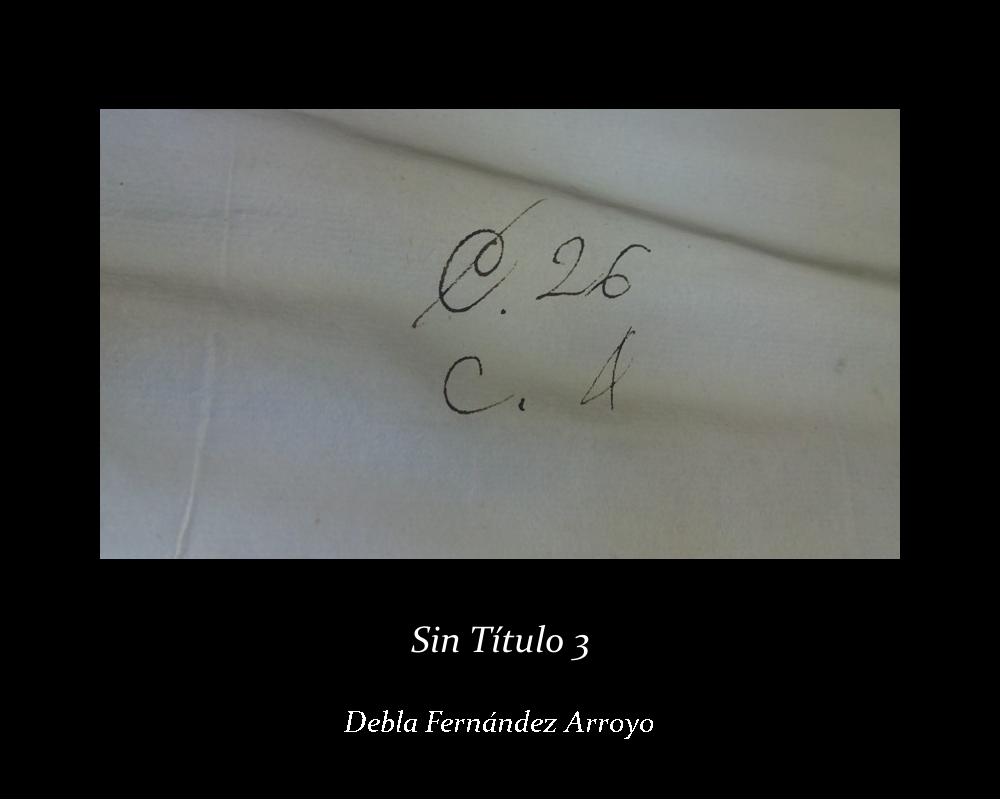 Sin título 3; Debla Fernández Arroyo (jpg 172 kb)