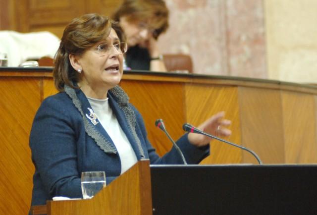 Comparece en el Parlamento acerca del sistema de información @rchivA