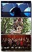 Descubre, experimenta, participa [Programa didáctico octubre 2010 - marzo 2011]