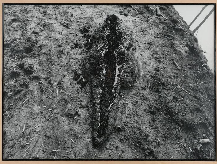 ANA MENDIETA. Sin título, 1980. Serie Silueta, Nº Edición 2/6. 100,5 x 135,5 cm. Fotografía