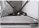 VALIE EXPORT. 'Stiegenbett', 1972. Nº Edición 1/3. 42 x 61 cm. Fotografía con tinta roja y negra