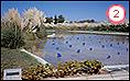 MAUREN SHEEHAN. Lagunas, 2000