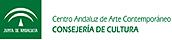Logo CAAC