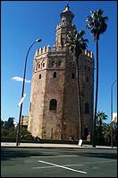 Lotty Rosenfeld. Una milla de cruces sobre el pavimento. Sevilla, 2013