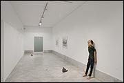 MP&MP Rosado. Donación y obras en la colección. Vista de sala. Fotografía: Guillermo Mendo