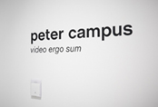 Photographic Tour by the exhibition Peter Campus. Video ergo sum