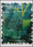 FEDERICO GUZMÁN.  Barbas de viejo (Pandi). 80 x 60 cm. Esmalte y tiza sobre madera. 1998