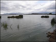 MARIA THEREZA ALVES. El retorno de un lago, 2012