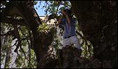 """Cabello / Carceller. Fotograma del vídeo """"A/O (Caso Céspedes)"""". Exteriores Monasterio de la Cartuja"""