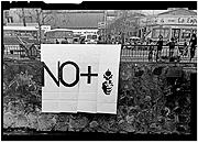LOTTY ROSENFELD.  No +, 1983