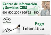 Centro de Informaci�n y Servicios y Pago Telem�tico