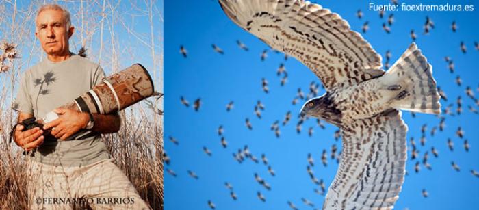 Exposición fotográfica de naturaleza 'La migración soñada'