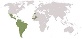 Actuaciones por ámbito geográfico [ Mapamundi ]