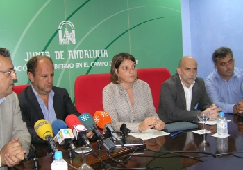 La Junta denunciará ante la Justicia europea los PGE por vulnerar la legislación sobre la Algeciras-Bobadilla