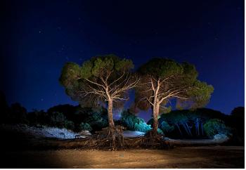 La obra 'Entre viento y  marea' gana el concurso de fotos del Día de los Humedales en los Toruños