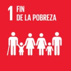 Objetivo 1. Fin de la pobreza