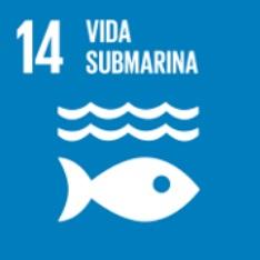 Objetivo 14. Vida submarina