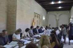 La directora del IAM asiste al Consejo Andaluz del Voluntariado