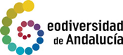 geodiv_logo.png