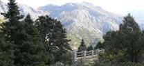 El Consejo aprueba la nueva planificación del Parque Natural Sierra de las Nieves