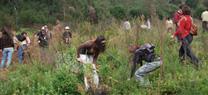 Medio Ambiente convoca ayudas para la realización de proyectos de educación y sensibilización ambien...</p>