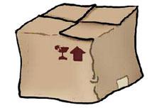Experimento nº 4: Efecto invernadero con caja de zapatos