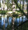 Nacimiento del río Huéznar.