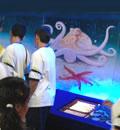 Exposición marina en la Reserva de la Biosfera Cabo de Gata-Níjar.