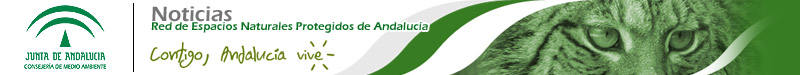 Boletín RENPA