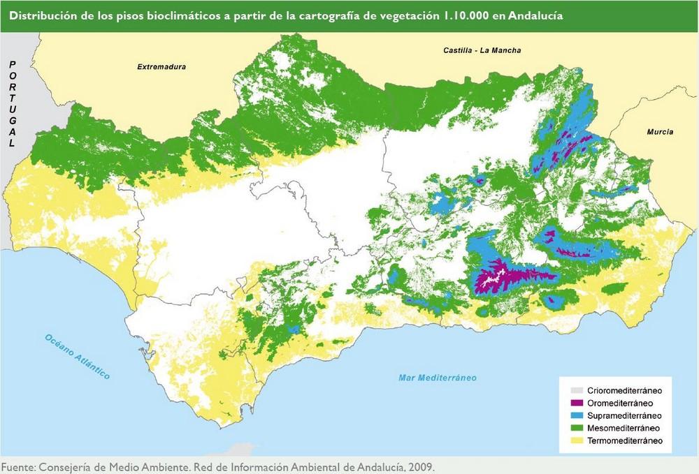 Medio ambiente en andaluc a informe 2008 consejer a de medio ambiente y ordenaci n del - Pisos de la junta de andalucia ...